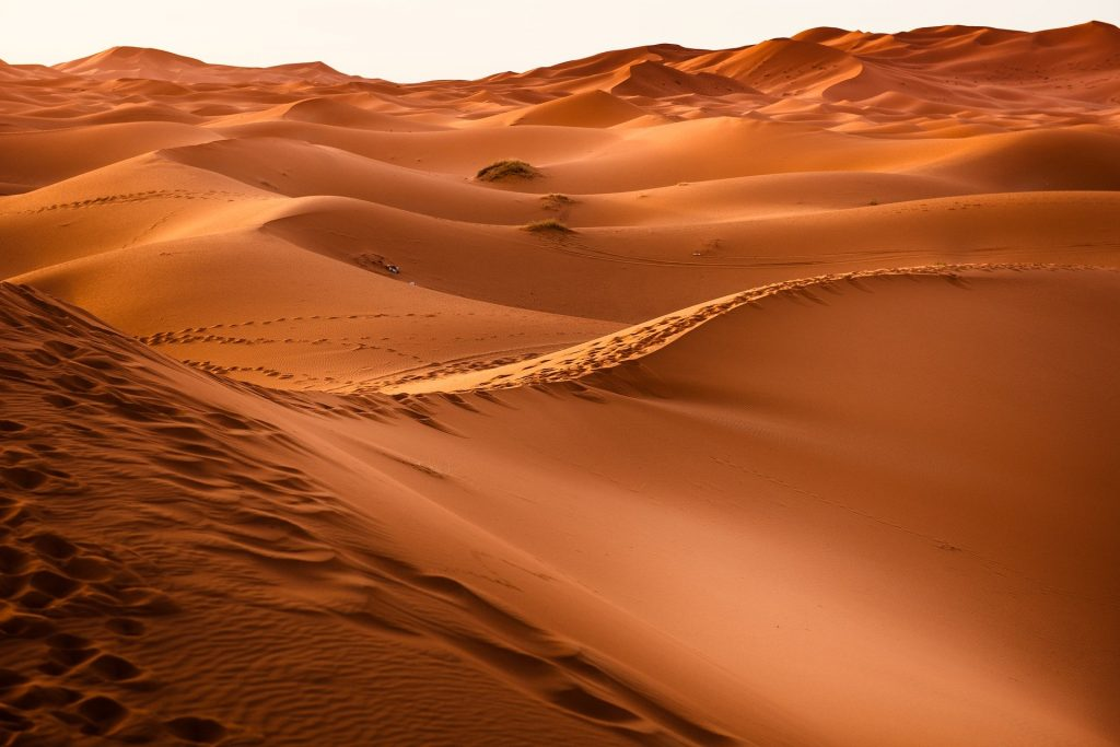 African wonder, Shahra desert